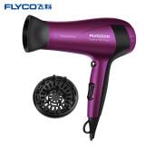 飛科(FLYCO) 電吹風 FH6618 紫色 恒溫設計