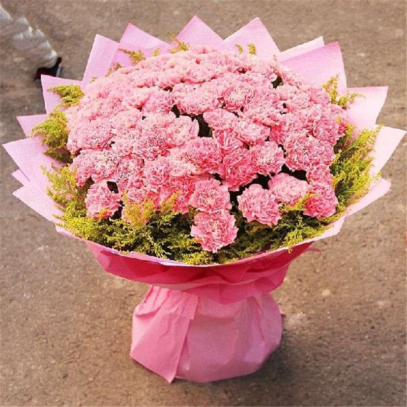 爱的印记 鲜花 66朵康乃馨花束