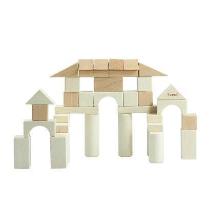 木玩世家 大块原木清水积木i5005 玩具 进口榉木 经典