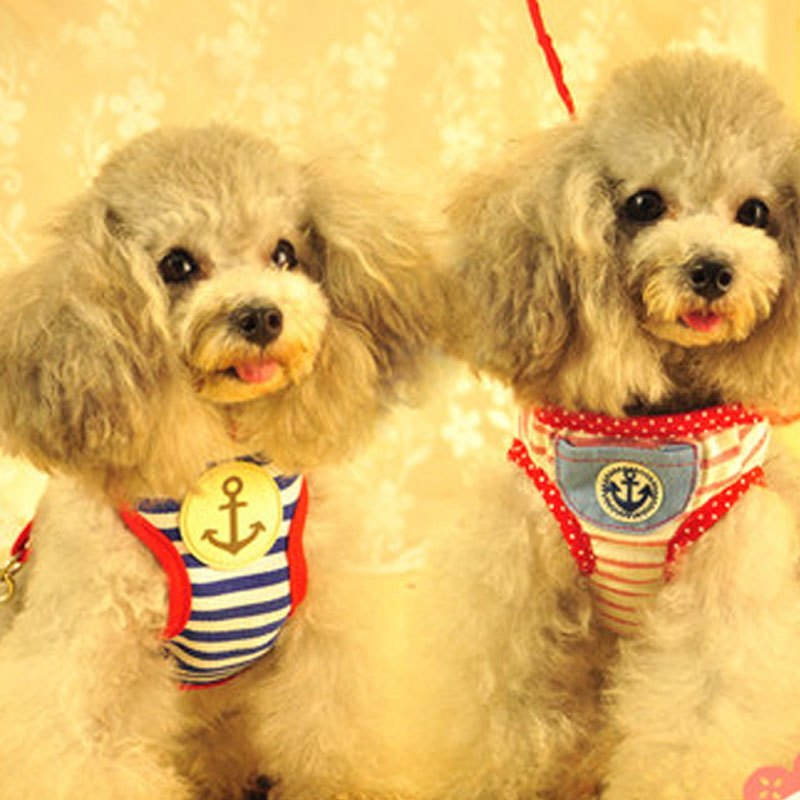 可爱宠物狗狗链狗绳子背心式狗狗牵引绳猫大中小型犬胸背带金毛泰迪