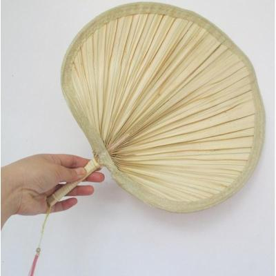 蒲扇的制作方法图解