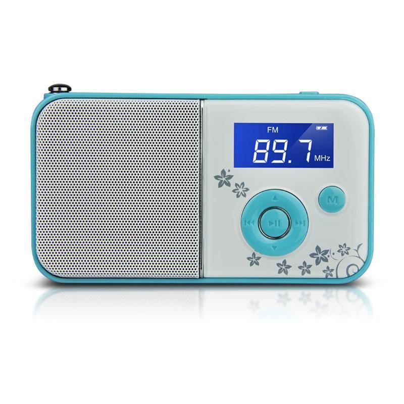 熊猫数码音响播放器DS-111蓝