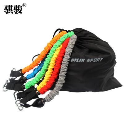 骐骏 拉力绳 套装弹力绳力量训练多功能拉力器家用健身器材弹力带