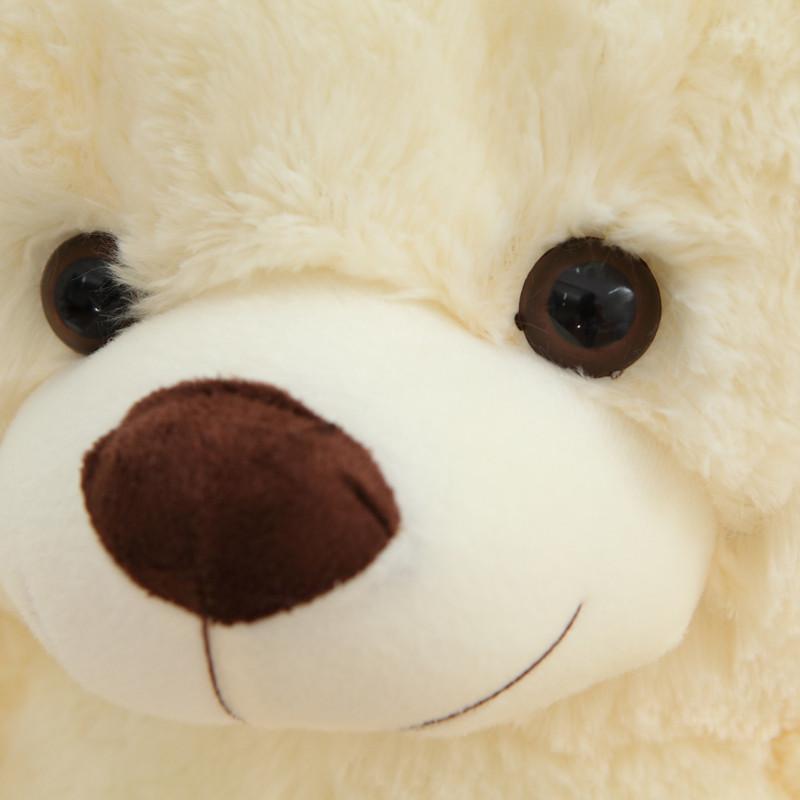 安吉宝贝 可爱大号泰迪熊毛绒玩具 抱心熊玩具大熊抱抱熊布娃娃 情人