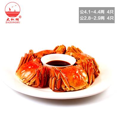 大纵湖大闸蟹礼券 蟹券1288型螃蟹礼卡 提货券 公4.5两母3.0两 8只装海鲜水产礼品券