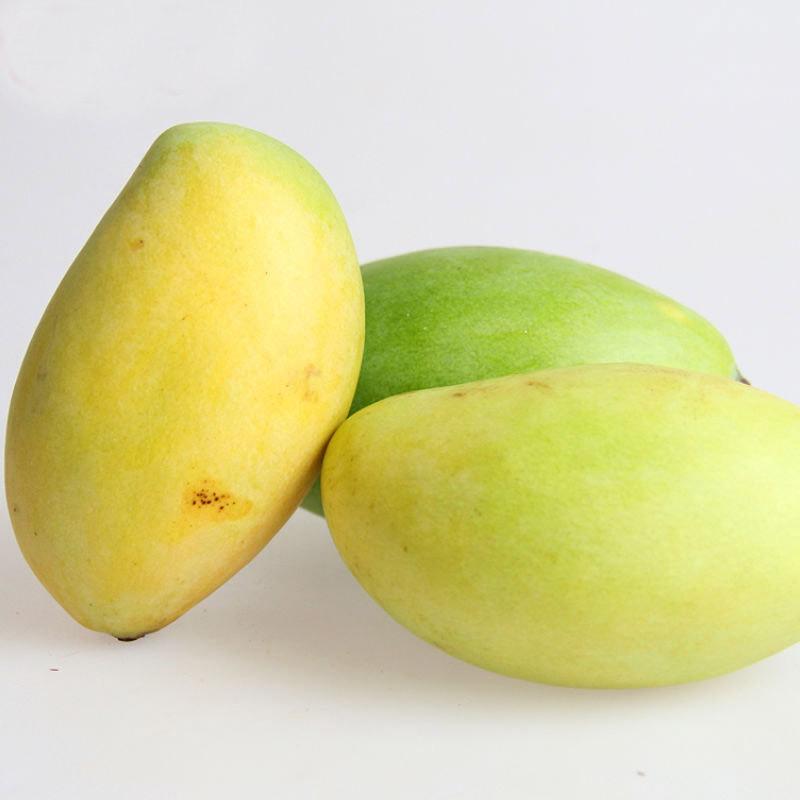 米又 越南芒果青皮芒果 玉芒8斤 米又(miyou)水果