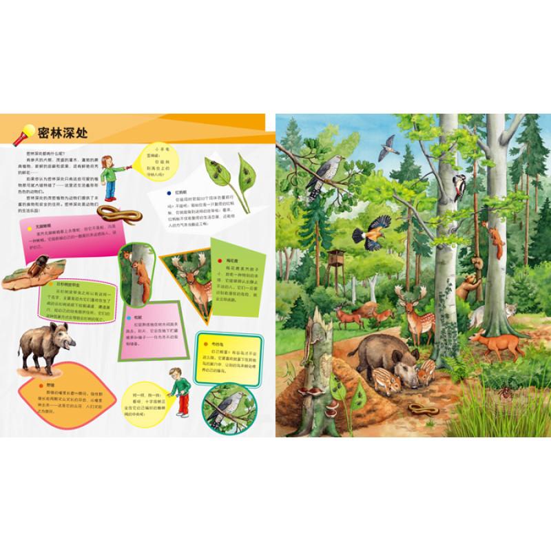 彩色图画书益智游戏书小学生课外书少儿百科青少年版森林动物故事绘本