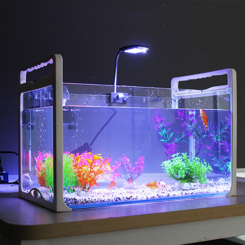 斯博佳 手提式懒人鱼缸水族箱 生态小型桌面鱼缸玻璃迷你创意乌龟缸