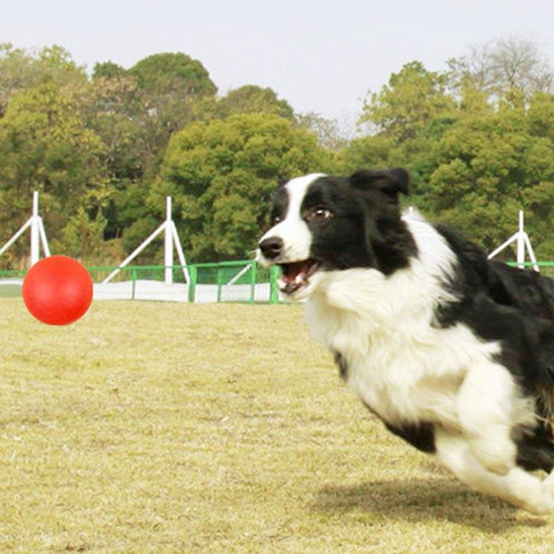 耐咬狗狗互动训练玩具宠物训练球金毛泰迪磨牙大型犬小狗耐咬球橡胶