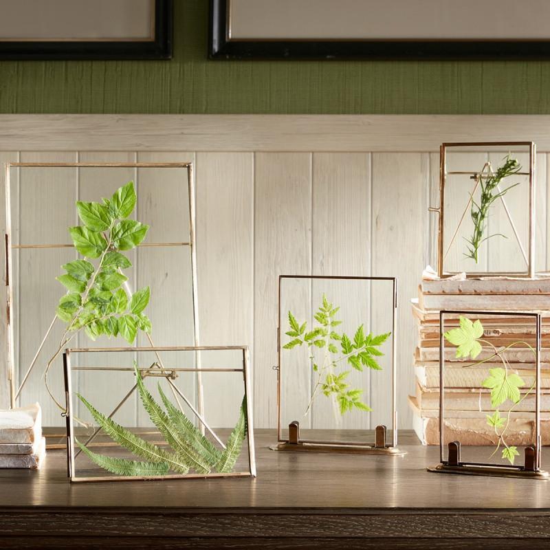 ethan铜边透明玻璃相框 iy创意标本摆件图片