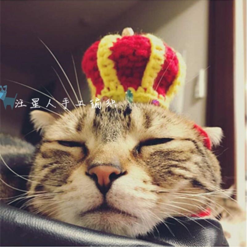 宠物头饰 手工发箍头箍 立体王冠 猫咪变装珍珠宝石皇冠 比熊俊介