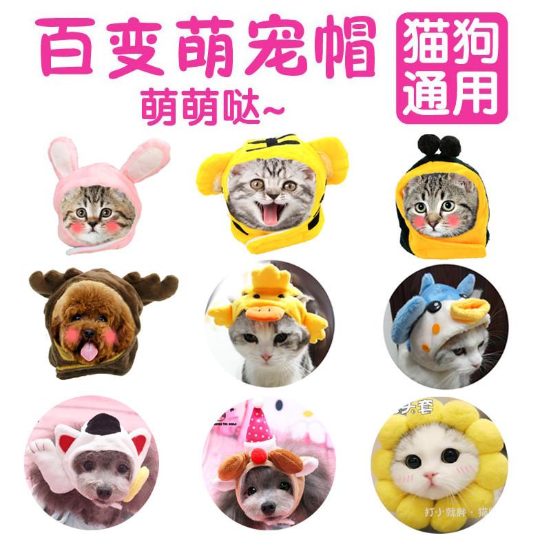 宠物帽子可爱动物造型变身装帽猫咪帽子头套狗帽头饰用品