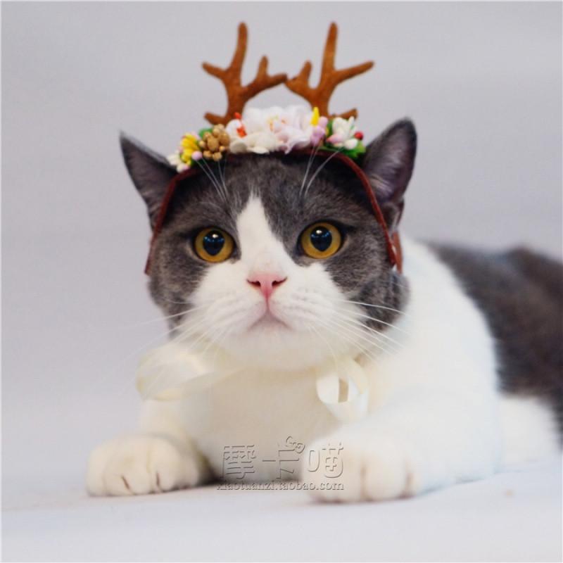 **手工宠物猫狗头饰头套 宠物圣诞帽驯鹿角婚礼花神小
