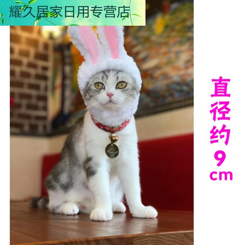猫咪头套可爱兔子变装帽猫头饰表演道具搞笑宠物帽子加菲猫兔耳朵