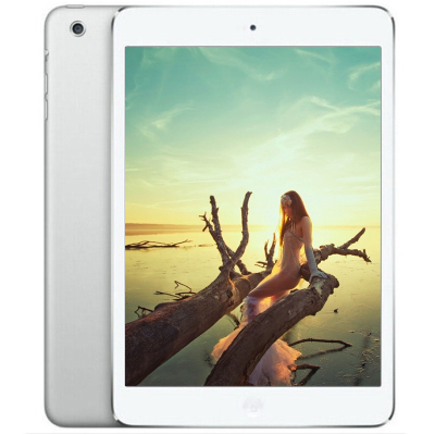 【二手9成新】Apple iPad mini 1平板电脑 银色 16G Wifi
